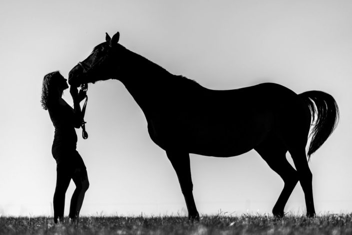 photo en nature et life style, la femme et son cheval en soirée